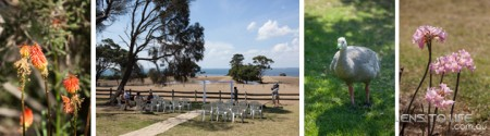 Phillip_Island_Wedding_Churchill_Island009
