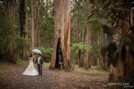 Dandenong_Ranges_Weddings040