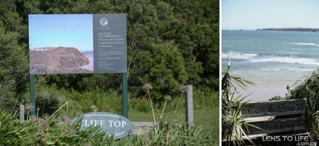 Phillip_Island_Wedding_Clifftop030