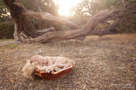 newborn_photographer_melbourne003