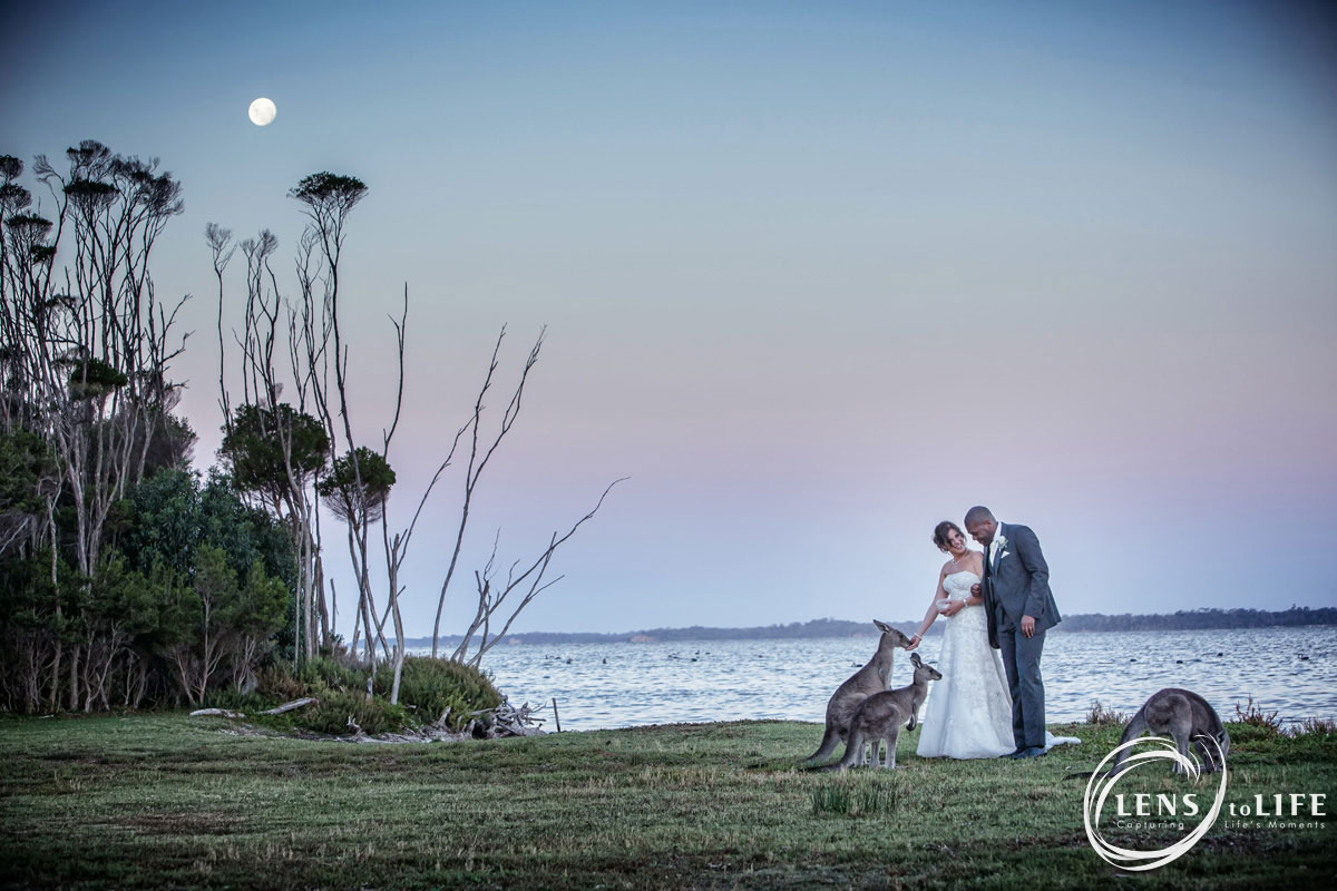 wattle point gippsland wedding