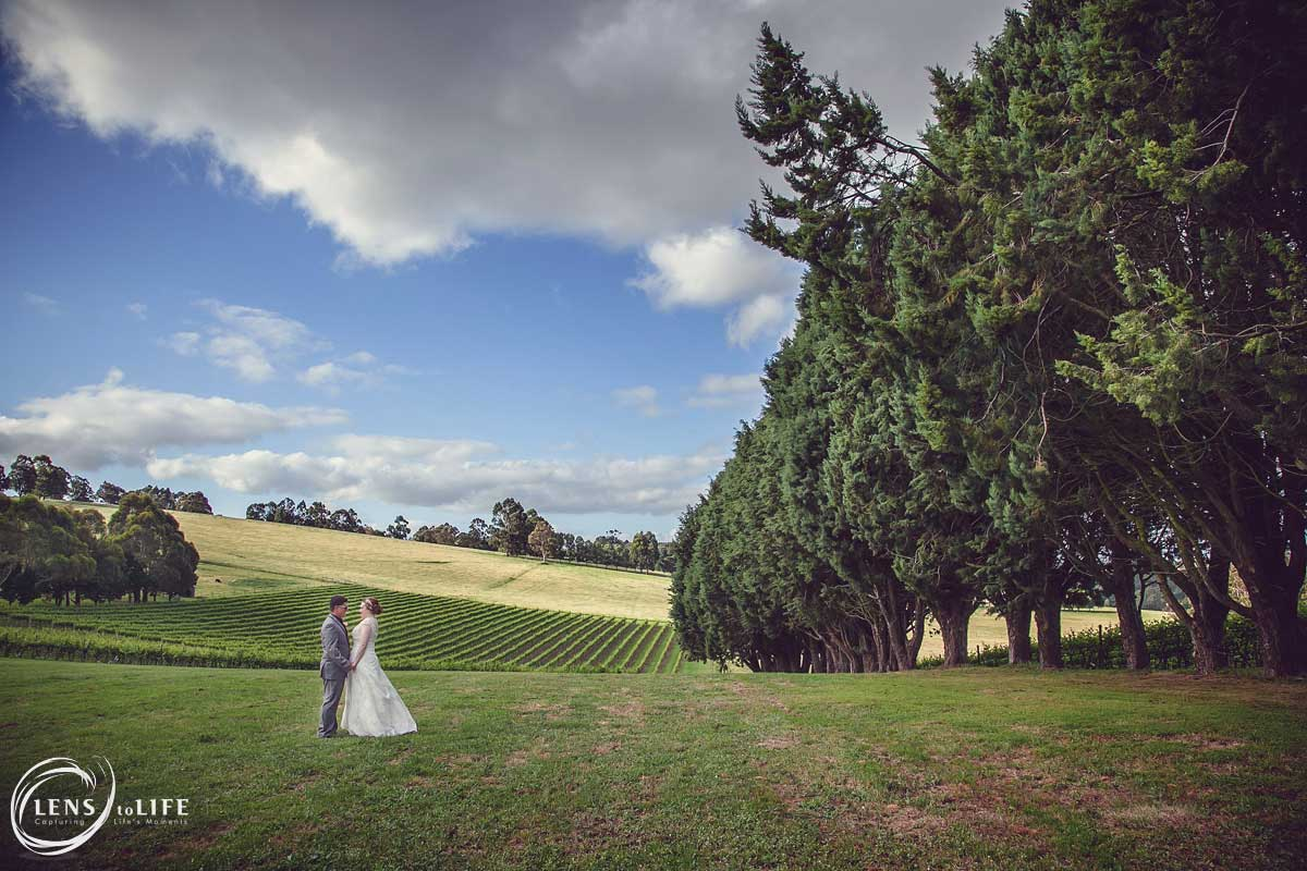 Wild_Dog_Winery_Wedding016