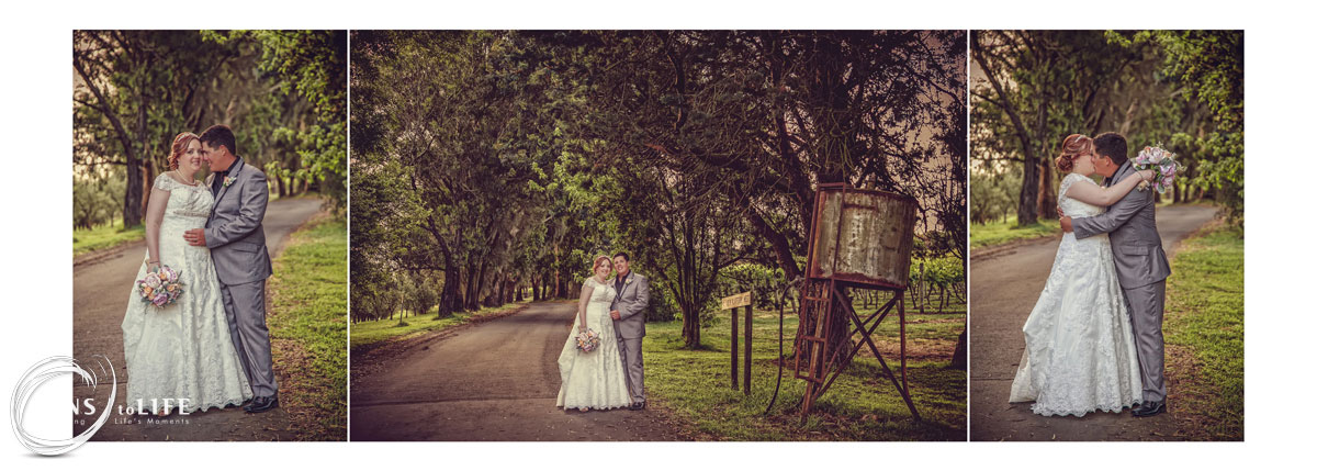 Wedding_Album_Wild_Dog_Winery021