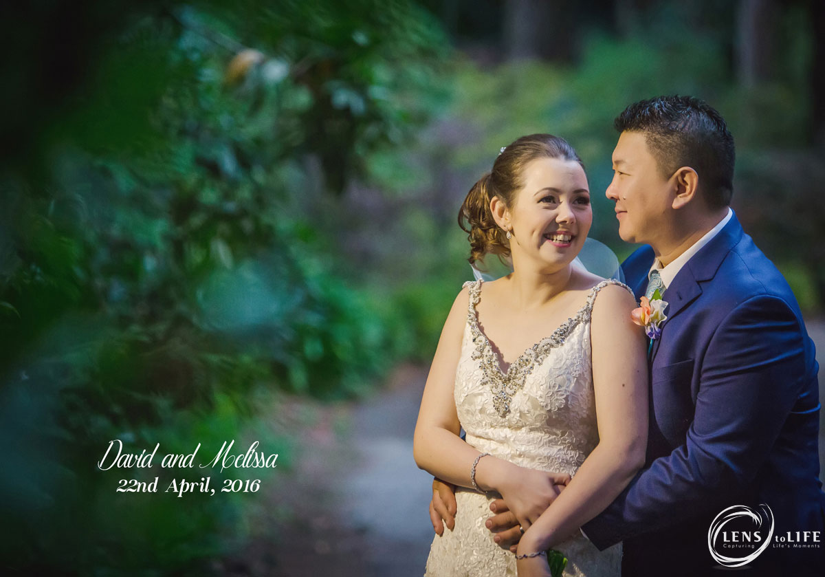 Lyrebird Falls Wedding Album