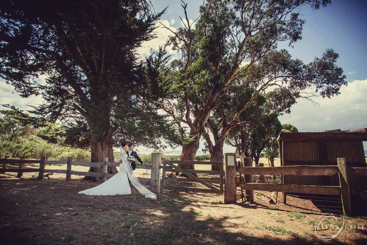 Island_Bay_Ranch_Wedding017
